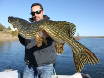pesca-extremadura-164.jpg