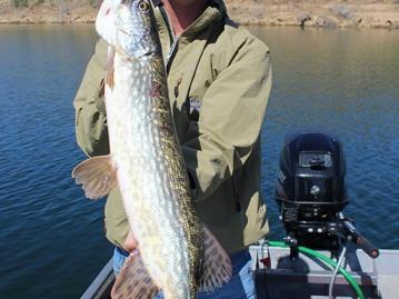 pesca-extremadura-238.jpg